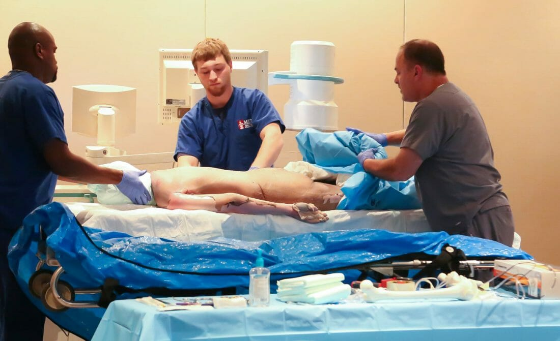 Healthcare and Medical Photography of Cadaver being prepared for hands on lab
